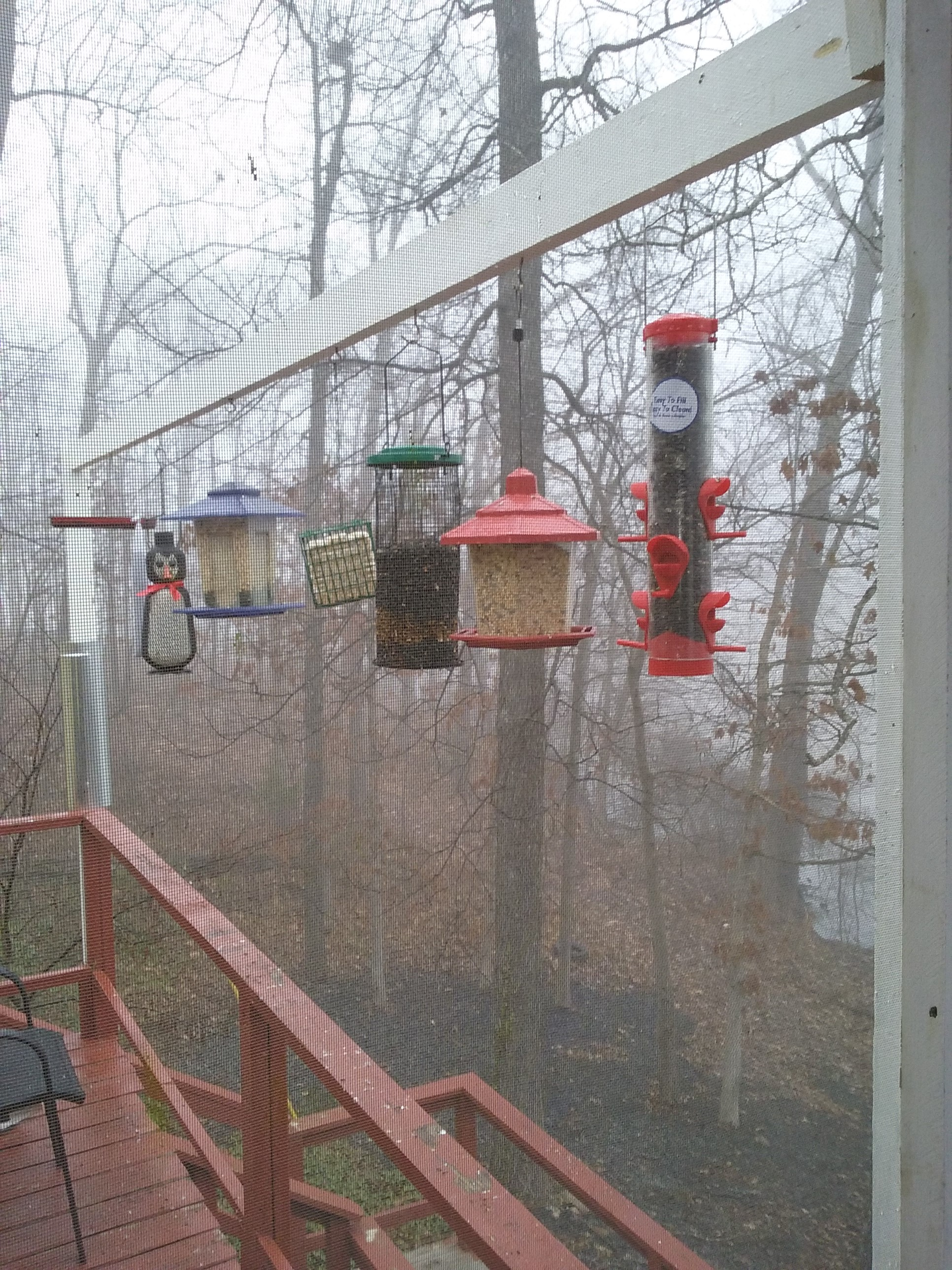 Multiple Bird Feeder Station Bird Feeding On Pinterest